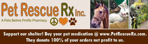 PetRescueRx - a pets before profits pharmacy